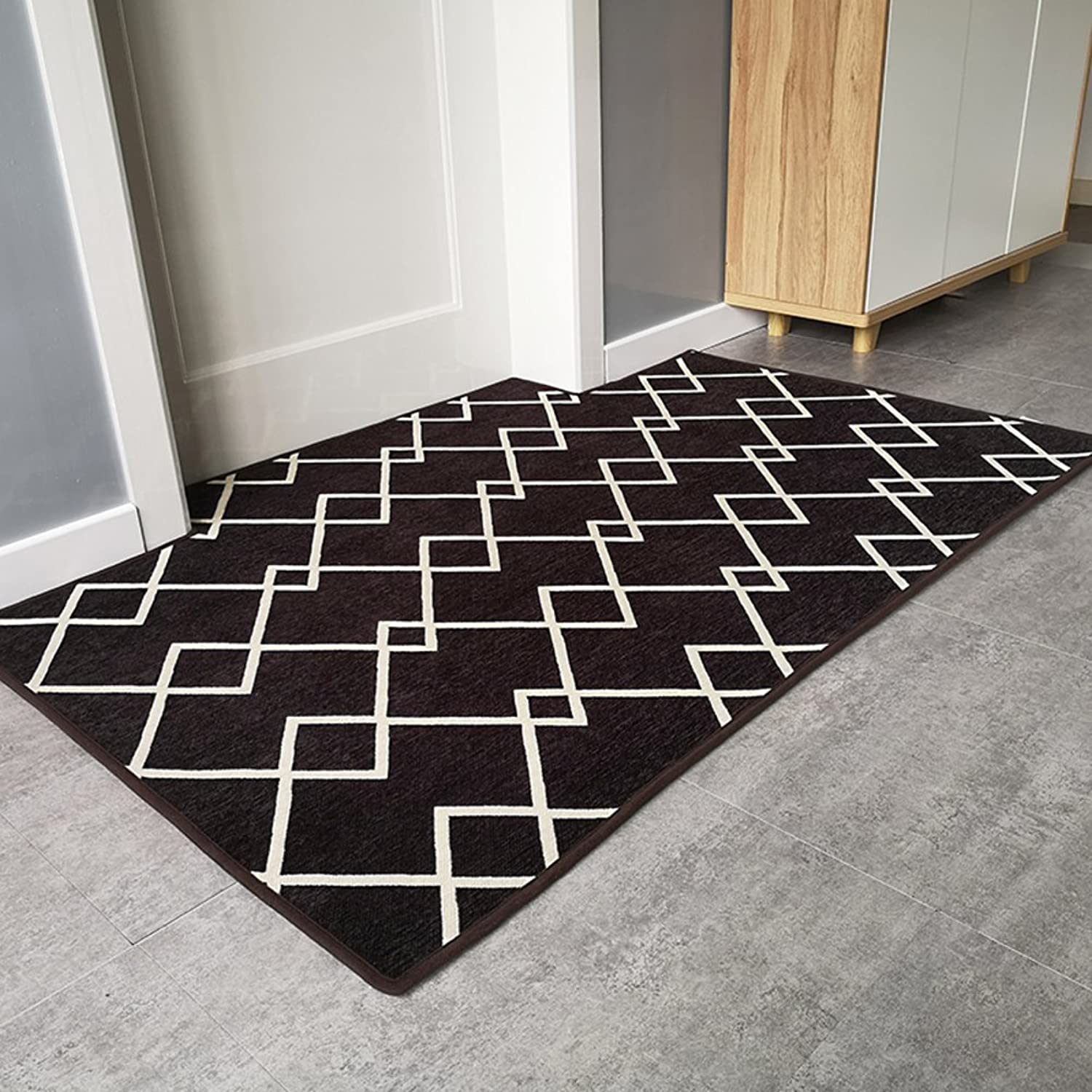 Non Slip Easy Clean Doormat,Super Soft Durable Area Rug Indoor Outdoor Small Mat Modern Plush Carpet Entrance Rug-G 100x140cm(39x55inch)