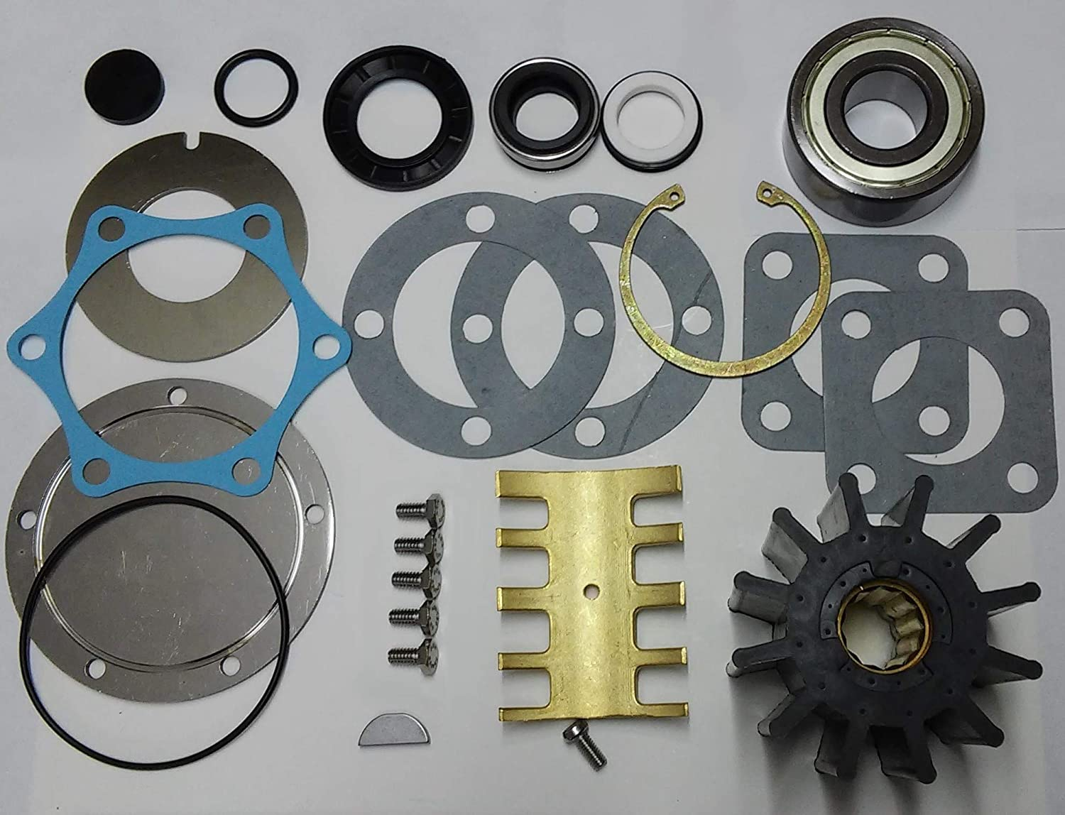 SCP Raw Tampa Mall Max 88% OFF Sea Water Pump Jabsco 6980-0011 for Kit Rebuild