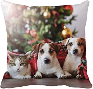 Topyee Throw Pillow Cover Cat and Dogs Under a Christmas Tree Pets Plaid Pattern Winter Design Animal Bright 18x18 Inch Home Decor Pillowcase Square Pillow Case Cushion Cover for Couch Bed
