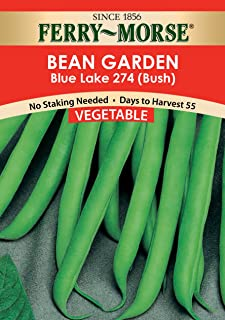 Ferry Morse Bean Blue Lake 274 (Bush) Vegetable Seed