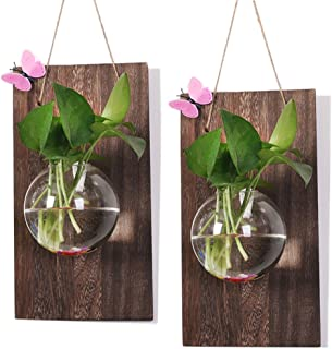 Ivolador Wall Glass Hanging Planter with Wooden Board for Wall Background Decoration Perfect for Propagating Hydroponic Plants Home Garden Wedding Decoration((Wood + Round vase) X 2 Set)