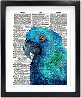 Susie Arts 8X10 Unframed Blue Parrot Upcycled Vintage Dictionary Art Print Book Art Print Home Decor Wall Art V132