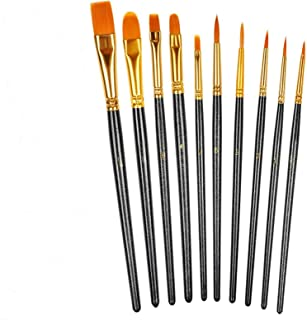 DELFINO Watercolor Oil Paint Brush Set, Nylon Hair Brush Professional for Children Kids Adults Artists with Nylon Hair Bru...