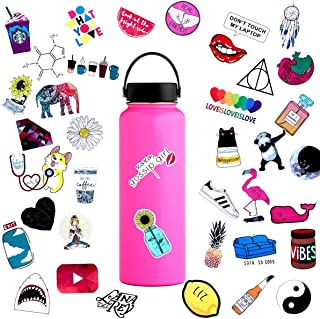 45pcs Water Bottle Sticker Decals Waterproof,Cute Bumper and Laptop Stickers for Girls,Computer,Car,Skateboard, Luggage,Snowboard[Not Random]
