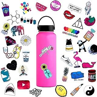 45pcs Water Bottle Sticker Decals Waterproof,Cute Bumper and Laptop Stickers for Girls,Computer,Car,Skateboard, Luggage,Snowboard[Not Random]