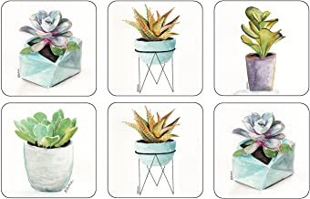 Pimpernel Succulents Collection Coasters - Set of 6