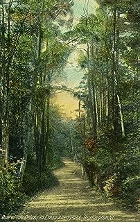 Burlington, Vermont - View of a Drive in Ethan Allen Park (16x24 Fine Art Giclee Gallery Print, Home Wall Decor Artwork Poster)
