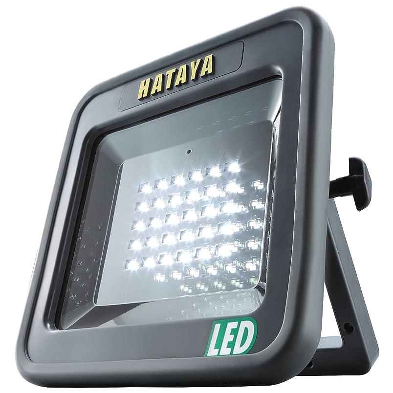 酔う名門下位ハタヤ(HATAYA) LEDワークランプ LWY-15