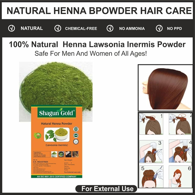 配分天文学群衆Shagun Gold A 100% Natural ( lawsonia Inermis ) Natural Henna Powder For Hair Certified By Gmp / Halal / ISO-9001-2015 No Ammonia, No PPD, Chemical Free 28 Oz / ( 1 / 2 lb ) / 800g