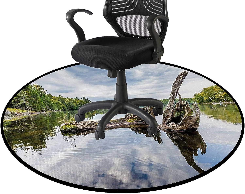 Green Pale Grey Office Swivel Chair Seattle Mall Print Mat discount Driftwood Area 3D