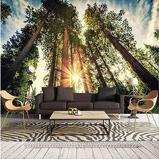 Pbldb 8D/5D Murals Wallpaper Nature Sun Towering Trees 3D Wall Photo Mural Wall Paper for Living Room 3D Wall Murals-200X140Cm