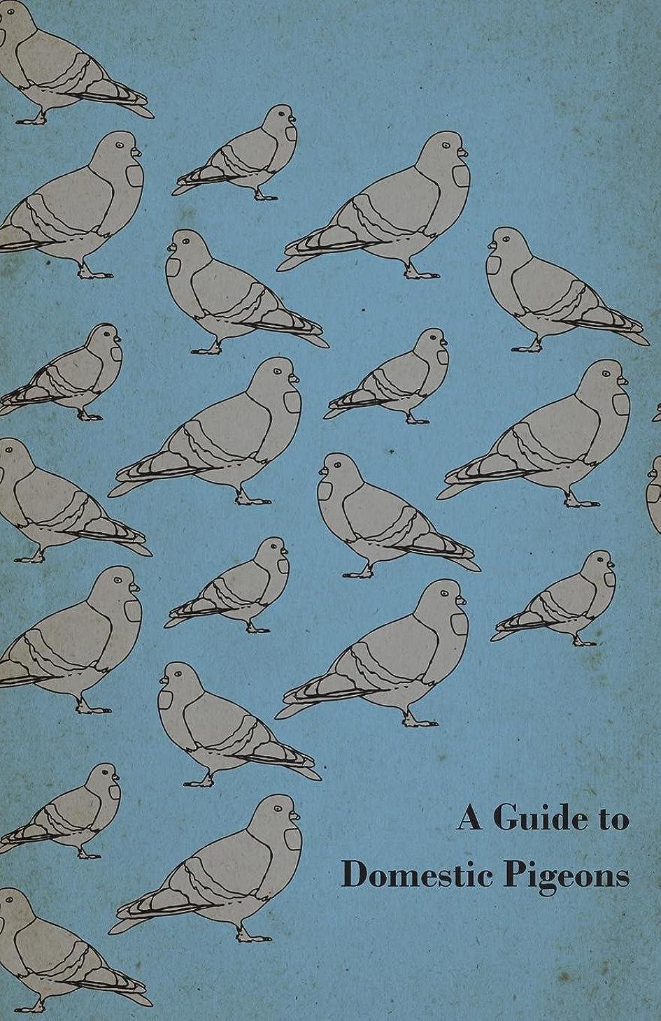 大惨事息切れ遺伝的A Guide to Domestic Pigeons - With Chapters on Doves, Training and Their Habits