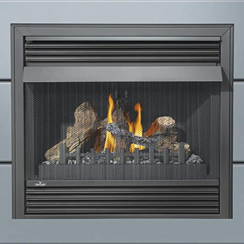 Stupendous Propane Gas Fireplace Insert Amazon Com Interior Design Ideas Clesiryabchikinfo