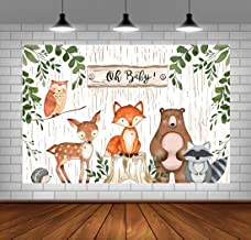 baby shower background decorations