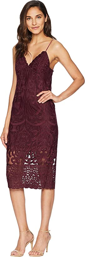 Bardot Dani Lace Dress Zapposcom