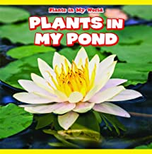 Plants in My Pond