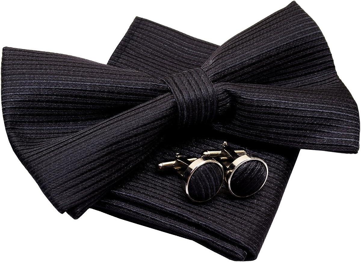 Stripe Textured Woven Pre-tied Bow Tie (5