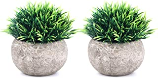 The Bloom Times 2 Pcs Fake Plants for Bathroom/Home Office Decor, Small Artificial Faux..