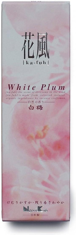 マインドフル古代マイコン花風 白梅 小バラ詰