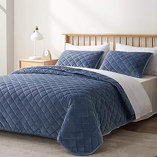 VEEYOO - Juego de colcha para cama individual, de terciopelo suave, ligero, transpirable, 2 piezas, color azul, tamaño ind...