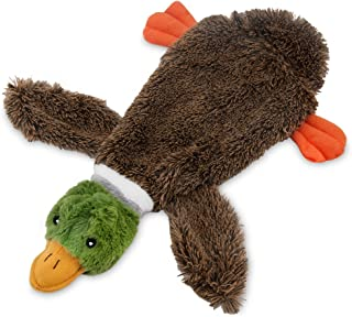 Best Pet Supplies 2-in-1 Fun Skin Stuffless Dog Squeak Toy, Medium, Wild Duck