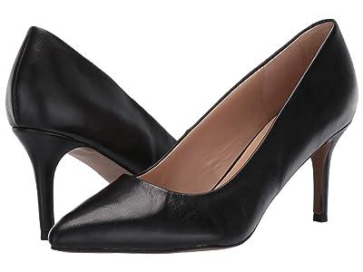 Franco Sarto Bellini (Black Leather) Women