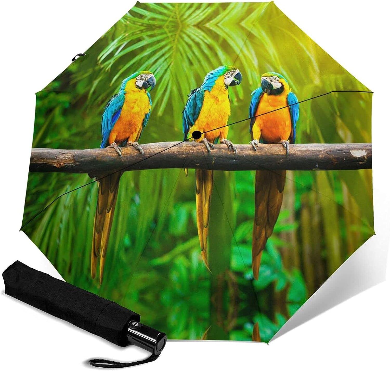 Super Special SALE held Tropical Birds Parrots Print Max 71% OFF Umbrella W Automatic Three-Folding
