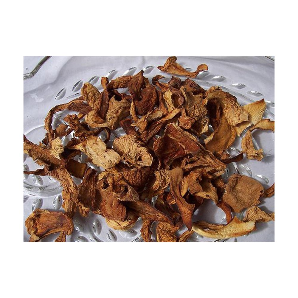 Dried Chanterelle Mushrooms oz Ranking TOP7 2 online shop
