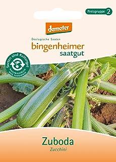 Bingenheimer Saatgut - Zucchini Zuboda - Gemüse Saatgut / Samen