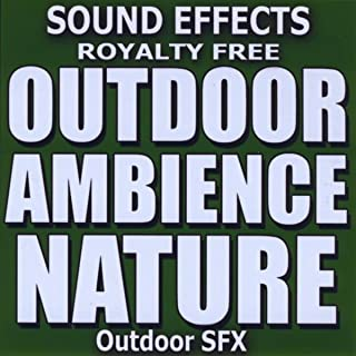 Outdoor Ambience, Nature Sound Effects