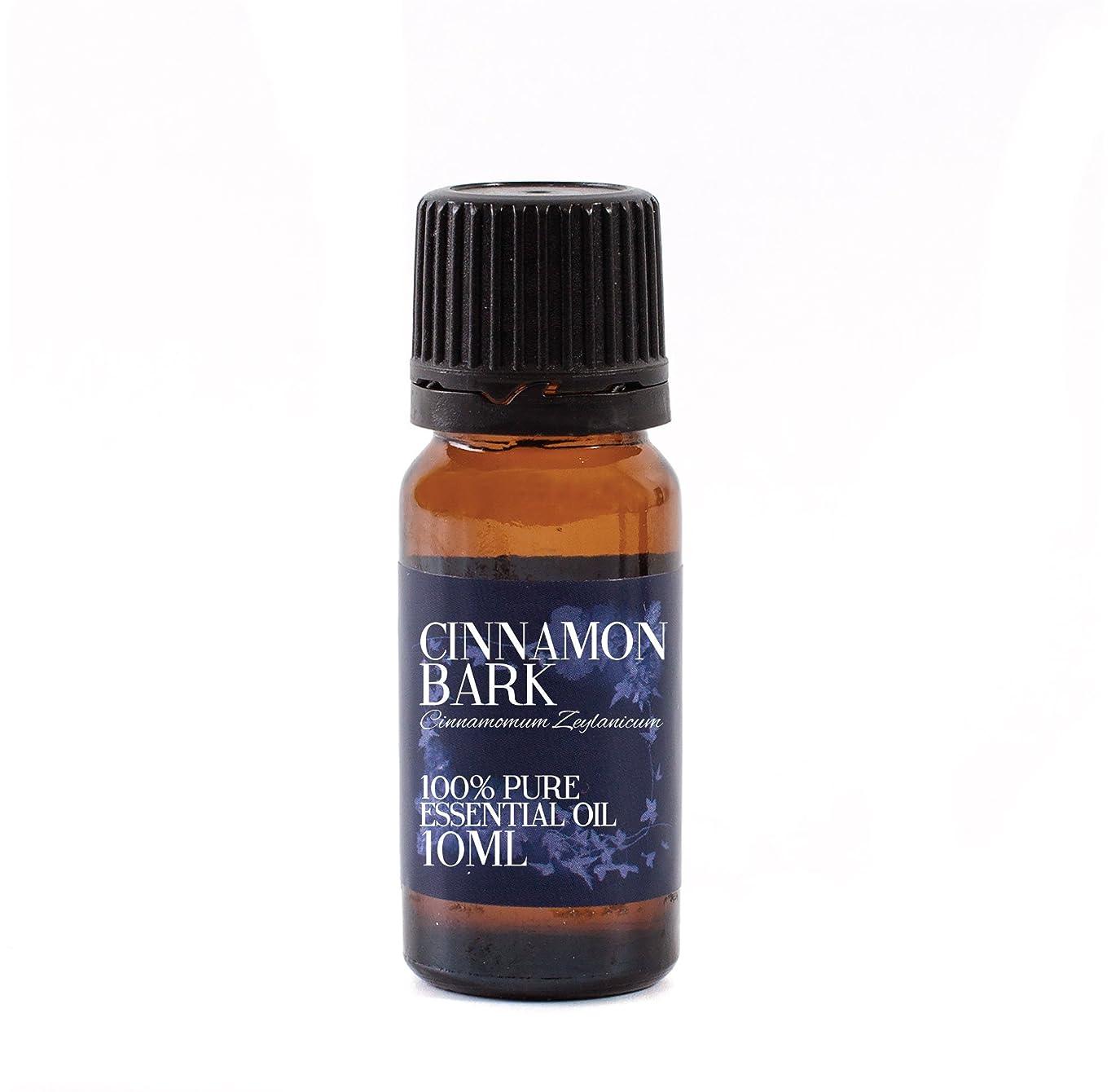 雰囲気位置づける所得Mystic Moments | Cinnamon Bark Essential Oil - 10ml - 100% Pure