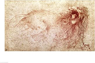 Sketch of a Roaring Lion by Leonardo Da Vinci Art Print, 27 x 20 inches