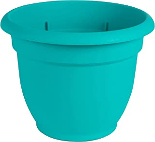 Bloem Ariana Self Watering Planter, 6