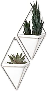 Umbra Trigg Hanging Planter Wall Decor Set, for Displaying Small Plants, Pens and Pencils, Makeup Accessories, White/Nickel