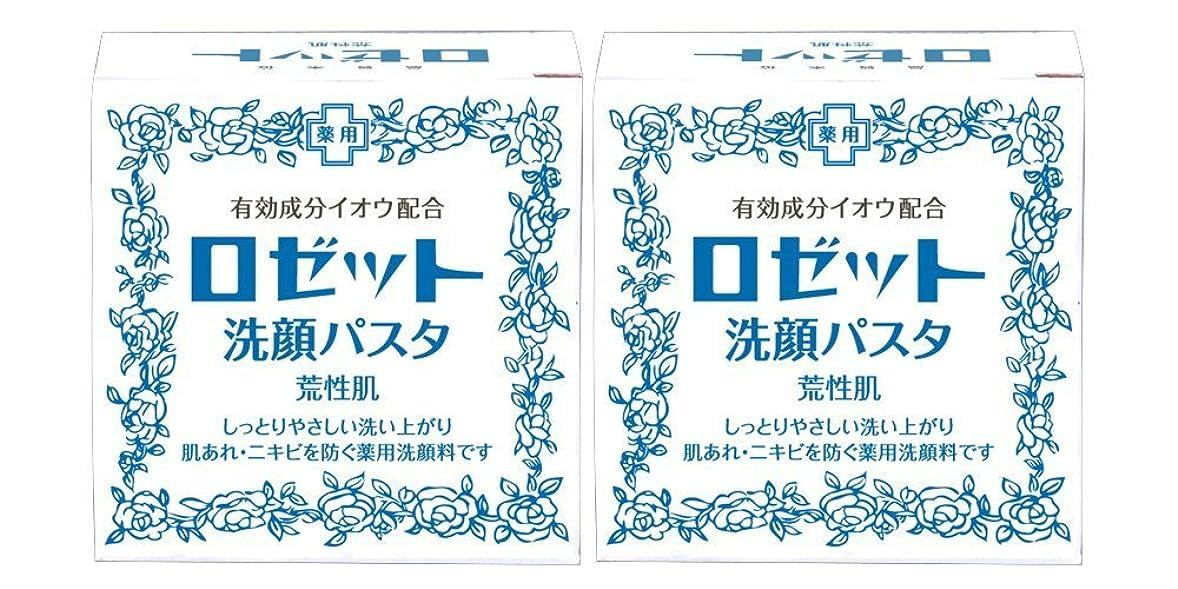 場合免疫する最後にロゼット洗顔パスタ 荒性肌 90g×2個パック (医薬部外品)