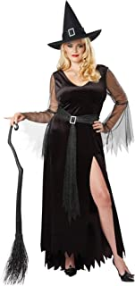 Women's Size Rich Witch Plus Costume