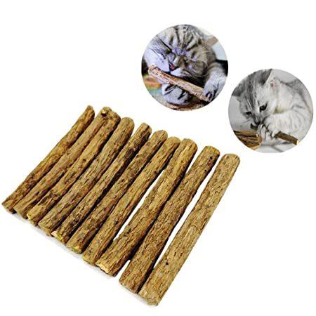 Aitsite 10本猫歯ぎしり棒 噛むスティック またたびの木 天然安全 100%無添加 おもちゃ 肥満解消 歯のクリーニングスティック ストレス解消