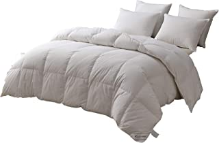Eastwarmth Luxury Goose Down Winter Warm Bedding Comforter/Quilt/Duvet Insert, Hypoallergenic, 100% Organic Cotton, 700 Filling Power Solid White, Full/Queen Size