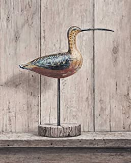 Posterazzi Collection Curlew Poster Print by Arnie Fisk (12 x 10)