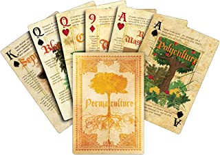 Best food playing cards Reviews