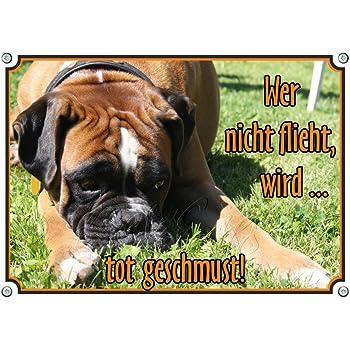 Petsigns Hundeschild mit Deutschem Boxer Willkommen DIN A4 wetterfestes Metallschild