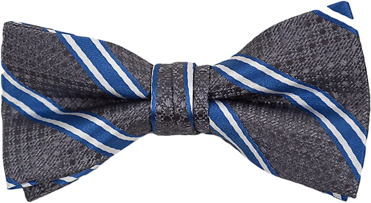 Boy's Gray & Blue Striped Polyester Woven Pre-Tied Banded Bow Tie Neckwear