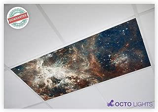Astronomy 014 2x4 Flexible Fluorescent Light Cover