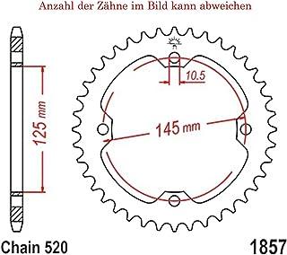 Suchergebnis Auf Für Kettenräder Pamoto Ihr Motorrad Spezialist Aus Holstein Kettenräder Antr Auto Motorrad