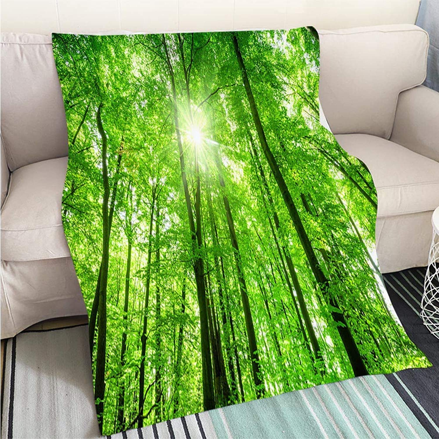 Creative Flannel Printed Blanket for Warm Bedroom Low Angle Shot of Beech Tree Forest Perfect for Couch Sofa or Bed Cool Quilt