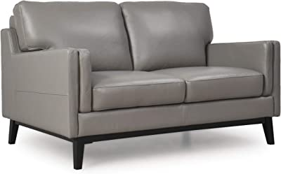 Peachy Amazon Com Natural Greige Leather Loveseat In Dove Gray Alphanode Cool Chair Designs And Ideas Alphanodeonline