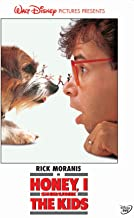 Honey I Shrunk the Kids [Reino Unido] [DVD]
