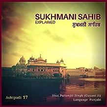 Sukhmani Sahib: Ashtpadi 17 (Thakur Ka Sewak Aagyakari - Jap Nanak Prabh Alakh Vidani) Pt. 34 (Original Mix)