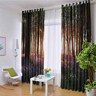 Farm House Decor 100% blackout lining curtain Stunning Bluebell Woods Sunrise with White Rabbit Sunny Spring Day in Woodland Full shading treatment kitchen insulation curtain W108 x L96 Inch Purple G