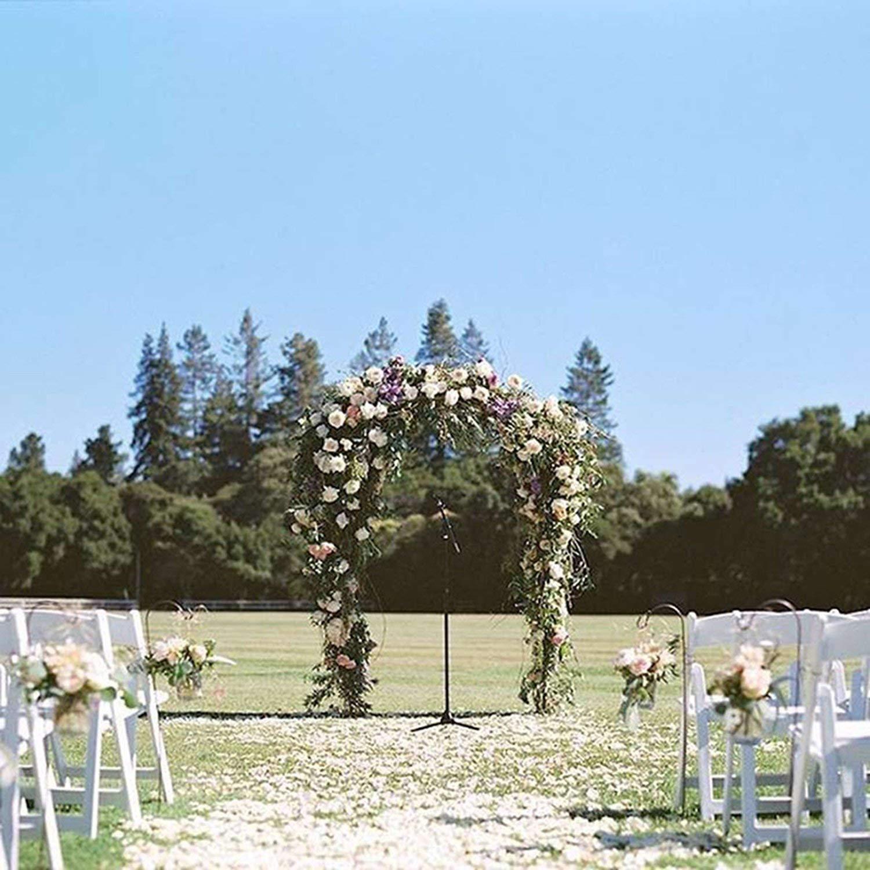 Goodbye - Arco Decorativo de Hierro para decoración de jardín, pérgola, Marco de Flores para Bodas, cumpleaños, Bodas, Fiestas, Bricolaje: Amazon.es: Hogar